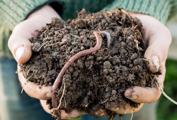 Soil Matters